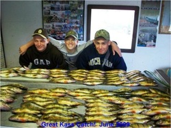 Perch Gallery from Klotz Lake Camp